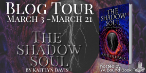 The Shadow Soul tour banner