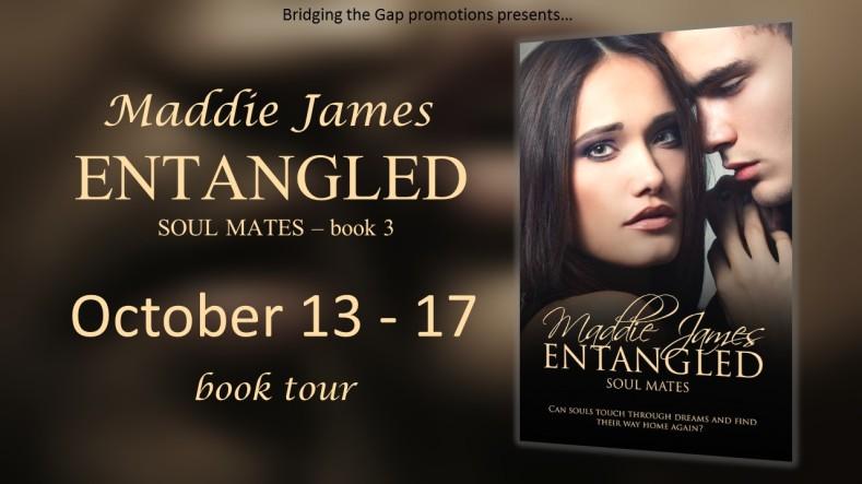 .Entangled Tour Banner